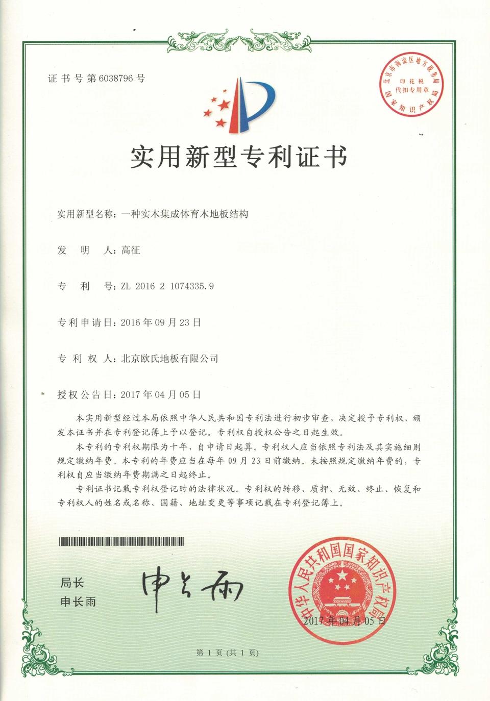结构系统专利证书